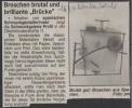 Ausstellung Mira Schmuck Aus Barcelona Wochenblatt April 1997